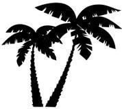 Palmenschattenbilder Stockfoto