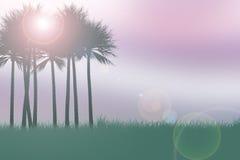 Palmenschattenbilder Lizenzfreie Stockfotografie
