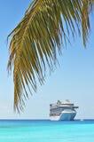 Palmera con el barco de cruceros en fondo Imagen de archivo libre de regalías