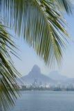 Palmera de Lagoa Rio de Janeiro Brazil Scenic Skyline Imagenes de archivo