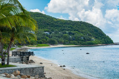 Palmera del coco con la playa tropical hermosa Imagen de archivo libre de regalías