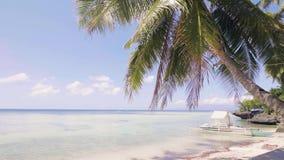 Palmera del paisaje en la playa y el barco en orilla del mar azul Mar azul y horizonte almacen de metraje de vídeo