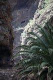 Valle de Masca Foto de archivo