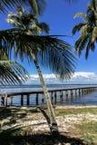 Palmera, playa y embarcadero Imagenes de archivo