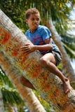 Palmera que sube del muchacho local en el pueblo de Lavena, isla de Taveuni, Imagenes de archivo