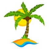Palmera tropical con el sol Fotos de archivo libres de regalías
