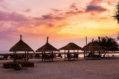 Palmera tropical con puesta del sol Foto de archivo libre de regalías