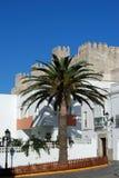 Palmera y apartamentos con el EL Bueno a la parte posterior, Tarifa, España de Guzman del castillo imagen de archivo