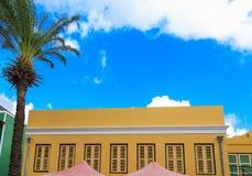 Palmera y estuco amarillo en Curaçao fotos de archivo libres de regalías