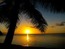 Palmera y playa en el tiempo de la puesta del sol Fotos de archivo libres de regalías