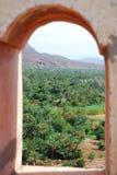 Palmeraie. Agdz, Souss-Massa-Draâ, Marrocos Fotografia de Stock