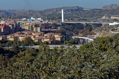 Palmeral of Elche, Spain against cityscape Stock Image