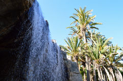 Waterfall Palm Tree Park - Cascading Water Scene Stock Photo