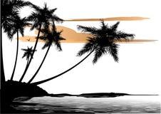 Palmeras ilustración del vector