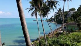 Palmeras altas del coco con agua azul, el cielo azul, y los hoteles cerca del océano Imagenes de archivo