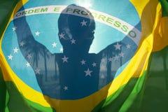Palmeras brillantes de la silueta de la bandera brasileña Foto de archivo libre de regalías