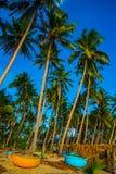 Palmeras contra el cielo azul Barcos redondos Vietnam, Mui Ne, Asia Foto de archivo