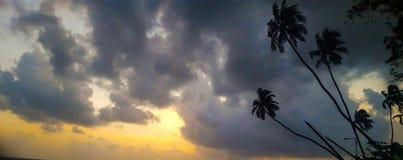 Palmeras debajo de las nubes en la puesta del sol imágenes de archivo libres de regalías