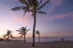 Palmeras del coco en la playa arenosa blanca, papel pintado del fondo de los días de fiesta de las vacaciones Vista de la playa t foto de archivo