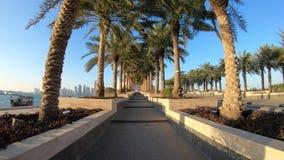 Palmeras del parque del museo de la ciudad de Doha almacen de video