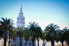 Palmeras en el Embarcadero, en San Francisco Imagen de archivo libre de regalías