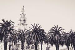 Palmeras en el Embarcadero, en San Francisco Fotografía de archivo