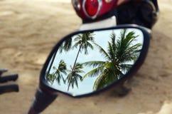 Palmeras en el espejo de la moto Fotos de archivo libres de regalías