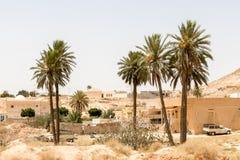 Palmeras en la ciudad de Matmata, Túnez, África imagen de archivo libre de regalías