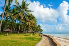 Palmeras en la playa Fotos de archivo