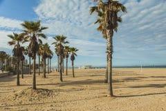 Palmeras en la playa Puesta del sol Foto de archivo libre de regalías