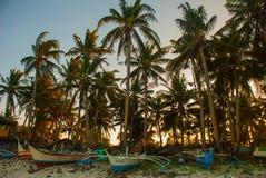 Palmeras en la playa en la puesta del sol Boracay, Filipinas Foto de archivo libre de regalías