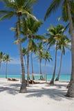 Palmeras en la playa tropical Fotografía de archivo libre de regalías