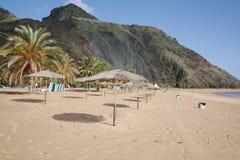 Palmeras en la playa tropical Teresitas, Tenerife, islas Canarias Fotografía de archivo