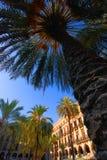 Palmeras en la plaza de Barcelona Foto de archivo libre de regalías