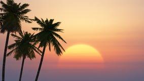 Palmeras en la salida del sol tropical libre illustration