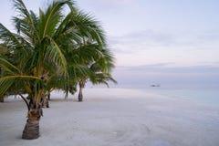 Palmeras sobre la playa y la lancha de carreras blancas de la arena sobre laguna de la turquesa en Maldivas en la puesta del sol fotografía de archivo