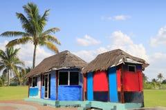 Palmeras tropicales coloridas de la cabina del palapa de la choza Fotografía de archivo