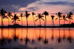 Palmeras tropicales de la puesta del sol de la playa del paraíso Foto de archivo