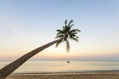 Palmeras tropicales de la puesta del sol de la playa del paraíso Fotos de archivo libres de regalías