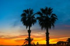 Palmeras tropicales de la silueta en puesta del sol Foto de archivo