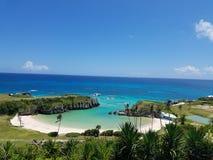Palmeras tropicales de las vacaciones de la playa de Bermudas fotos de archivo
