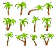Palmeras verdes de la historieta en un fondo blanco El sistema de árboles tropicales de la historieta divertida modela iconos, pa Imagen de archivo libre de regalías