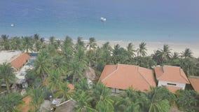 Palmeras verdes en territorio del hotel turístico en la opinión del paisaje de la playa del mar del abejón Palma tropical de l almacen de metraje de vídeo