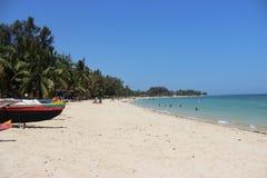 Palmeras y arena en la playa de Ifaty, Madagascar foto de archivo