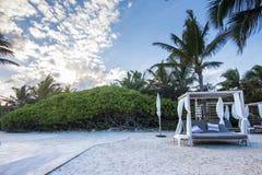 Palmeras y cabañas cerca de una playa Imagen de archivo libre de regalías