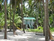 Palmeras y casa de planta baja de Belice Cayes Fotos de archivo libres de regalías