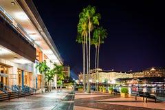 Palmeras y el exterior de Convention Center en la noche adentro foto de archivo