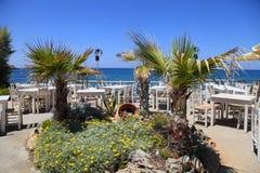 Palmeras y flores en la terraza griega al aire libre del café, Creta, Gre Imagen de archivo libre de regalías