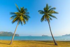 Palmeras y playa Imagen de archivo libre de regalías