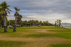 Palmeras y playa Foto de archivo libre de regalías